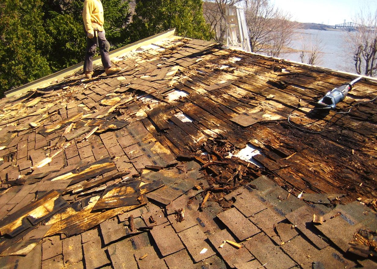 La condensation dans le grenier peut endommager le toit. Il est recommandé de rechercher les causes de l'humidité et de les éliminer.